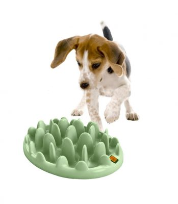 Northmate Interactive Feeder - Dog Lover Gifts
