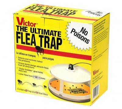 Victor M230 Ultimate Flea Trap