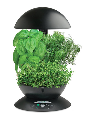 AeroGarden 3-Pod Indoor Garden with Gourmet Herb Seed Kit