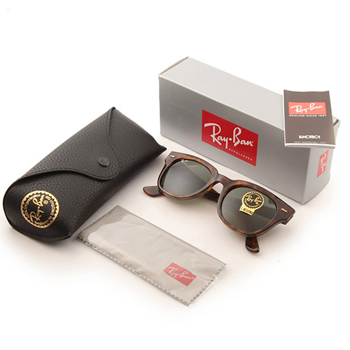 Ray-Ban Meteor Wayfarer Sunglasses