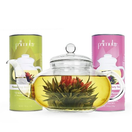 Primula Flowering Teas and Daisy Tea Pot Set