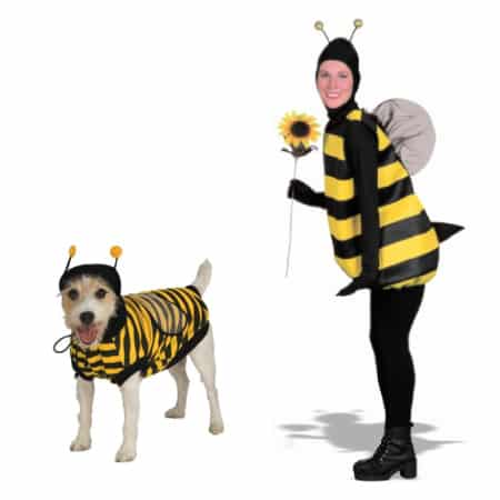 Halloween costumes for dogs and owner