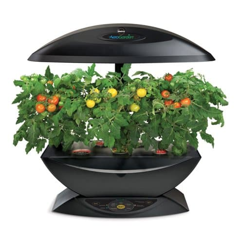 AeroGarden Indoor Garden Kit
