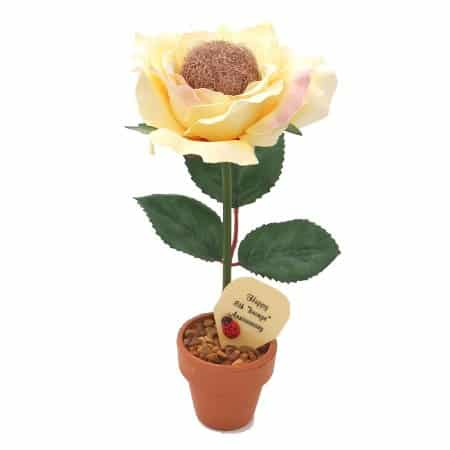 Potted Bronze Rose