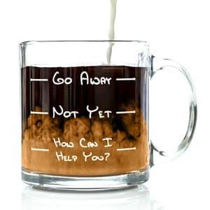 Go Away Funny Coffee Mug