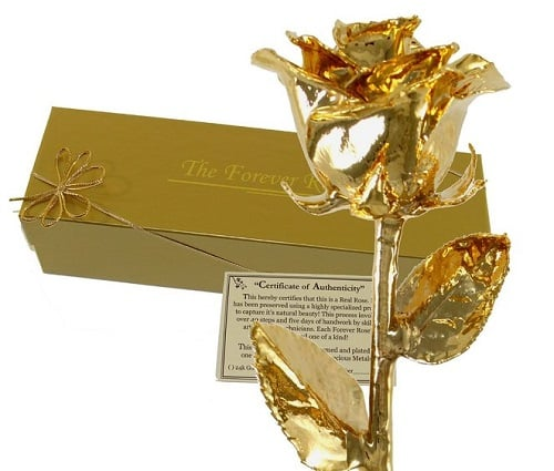 Gold Dipped Real Rose