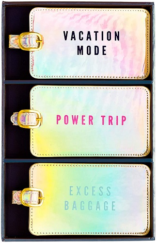 Iridescent Power Trip Luggage Tag Set by Eccolo World Traveler