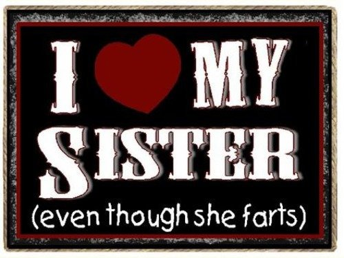 Funny Sister Magnet