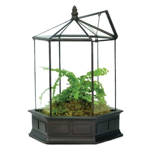 H Potter Six Sided Glass Terrarium