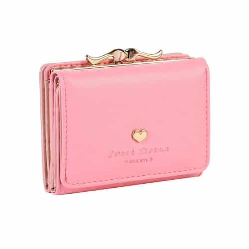 Damara Small Clutch Wallet