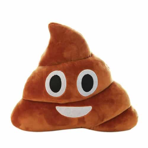 Poop Pillow