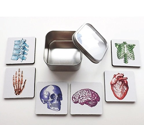 Human Body Anatomy Coaster Set