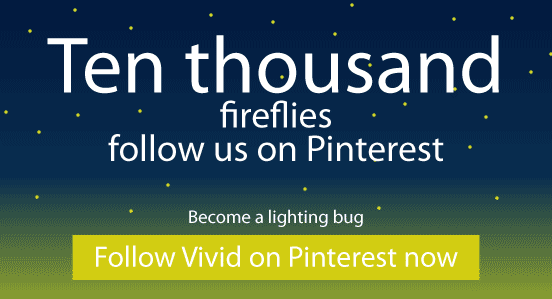 Follow Vivid on Pinterest
