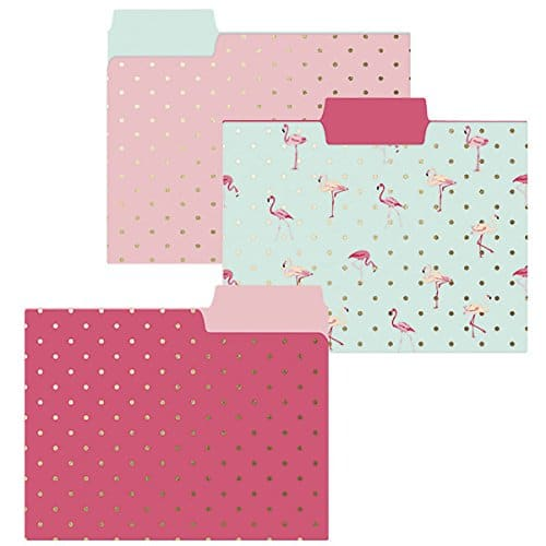 Flamingo Pink Folder Set. Back to school supplies.