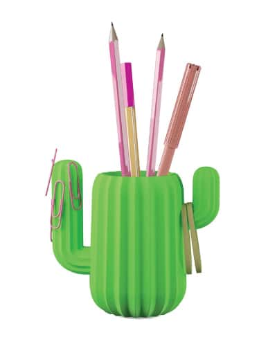 Cactus Pen Holder - Back to school supplies