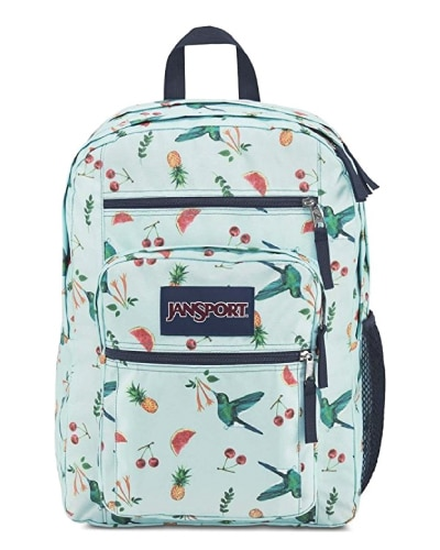 JanSport Sweet Nectar Backpack. Going to college school supplies. Off to college gift ideas for girls.