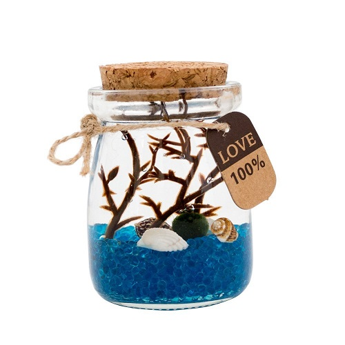 Moss Balls Glass Aquarium Kit. Office decor. Boss Day gifts.