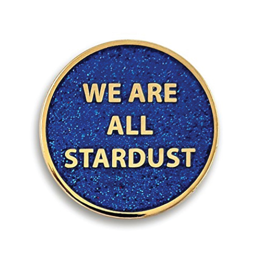 "Pinsanity ""We Are All Stardust"" Enamel Lapel Pin"