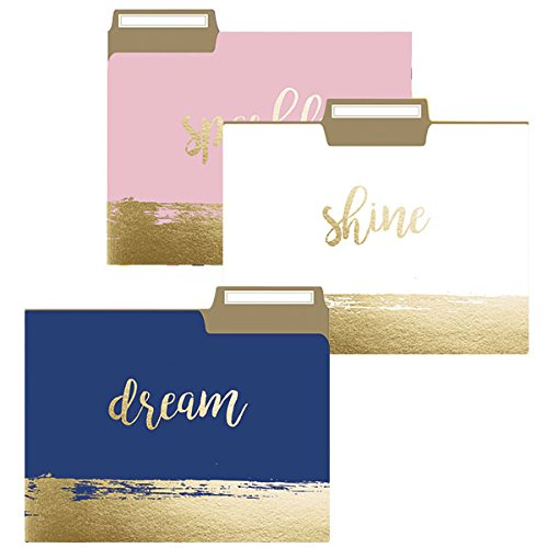 Brushstrokes File Folder Set