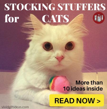 stocking stuffers cat love