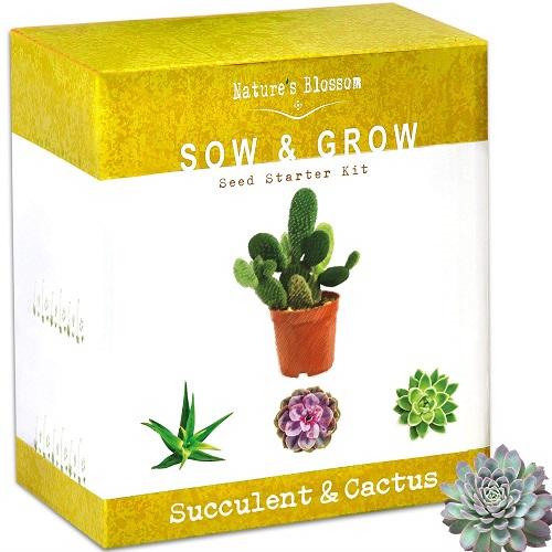 Nature's Blossom Succulent & Cactus Growing Kit