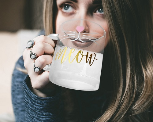 Meow Glass Coffee Mug | Cat Coffee Mugs