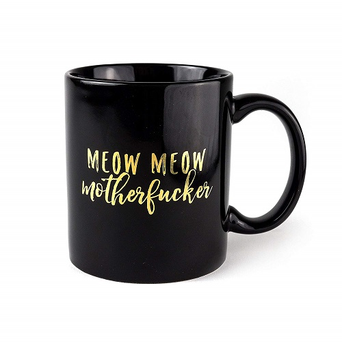 Funny Swearing Cat Coffee Mug | Cat Mugs