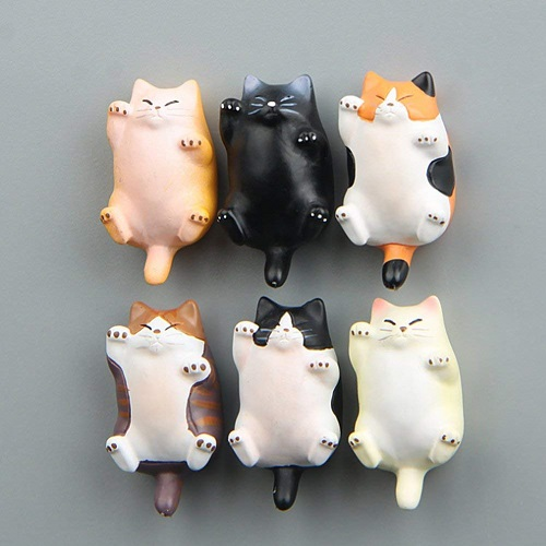 Fun Cat Office Magnets For Teachers