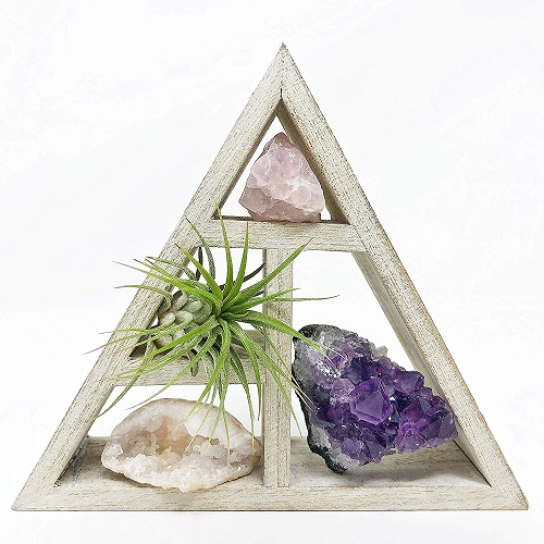 Mini Crystal + Air Plant Gift Set | Christmas Gifts for Teen Girls