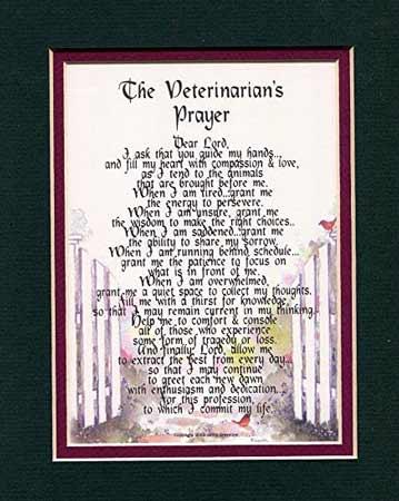 gifts-for-veterinarians-veterinarian-prayer