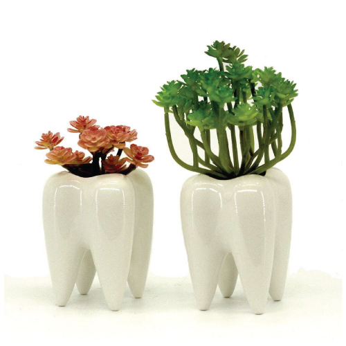 Set of 2 White Tooth Planter Pots