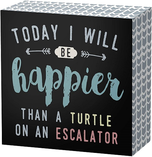 Happy Turtle Sayings Decorative Wooden Box Sign